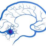 Grafika Poradnia Neurologiczna