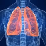 Grafika Poradnia Chorób Płuc